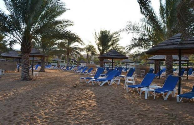 фотографии отеля Movenpick Resort & Residences Aqaba изображение №7