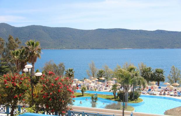 фотографии отеля Bodrum Holiday Resort & Spa (ex. Majesty Club Hotel Belizia) изображение №43