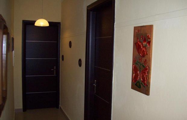 фотографии отеля Edelweiss Studios изображение №3