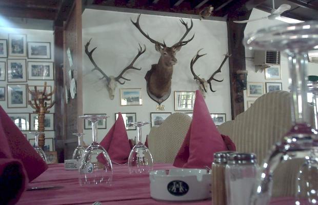 фото отеля Royal Rihana изображение №13