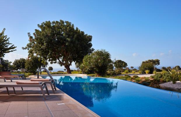 фотографии Aphrodite Hills Resort изображение №4