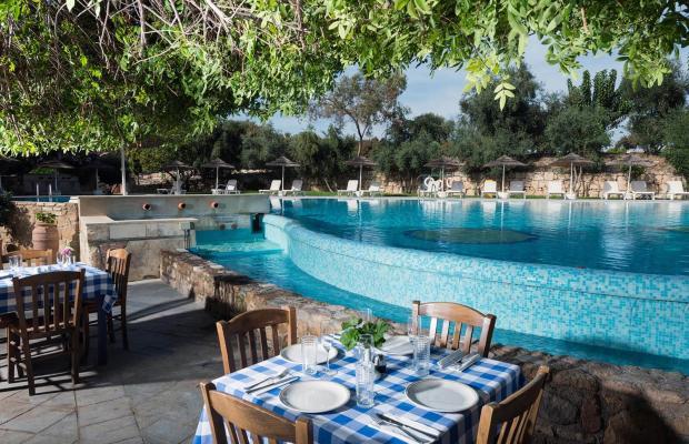 фотографии Basilica Holiday Resort изображение №4