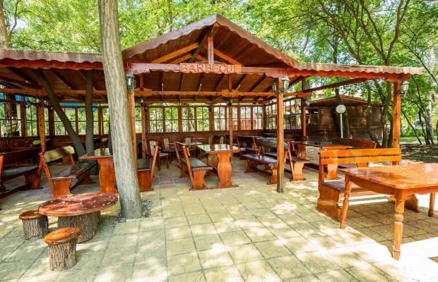 фотографии отеля Polyusi изображение №19