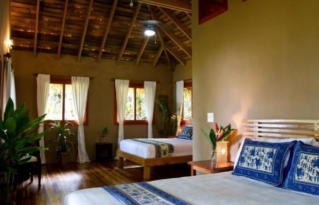 фото отеля Copa De Arbol Beach & Rainforest Resort изображение №17