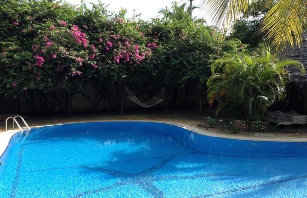 фотографии отеля Langi Langi Beach Bungalows изображение №23