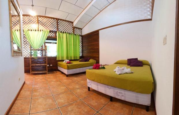фото отеля Cariblue Beach and Jungle Resort изображение №69