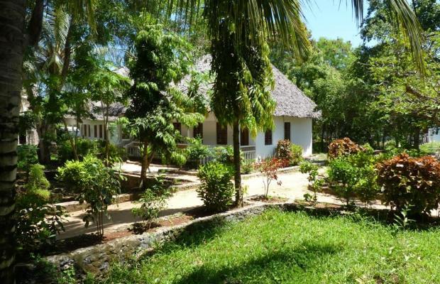 фотографии The Nungwi Inn изображение №8