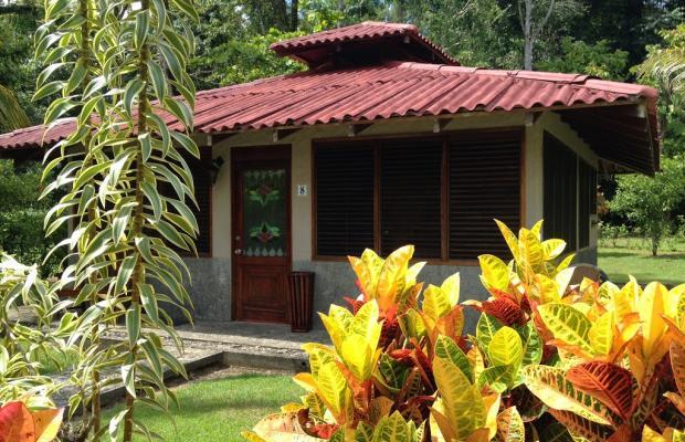 фото отеля Casa Corcovado Jungle Lodge изображение №105
