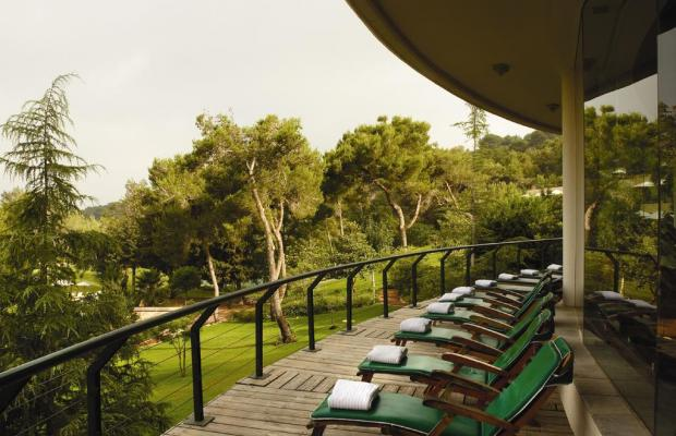 фотографии Carmel Forest Spa Resort by Isrotel Exclusive Collection изображение №24