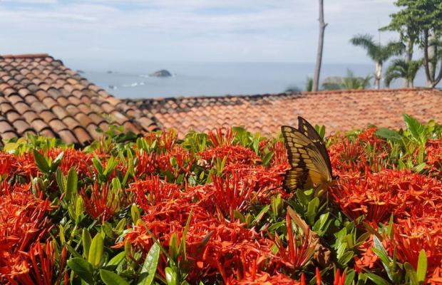 фотографии отеля La Mariposa изображение №27
