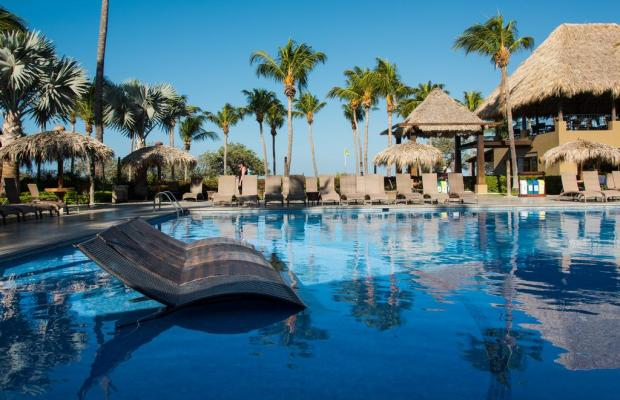 фотографии отеля Flamingo Beach Resort изображение №3