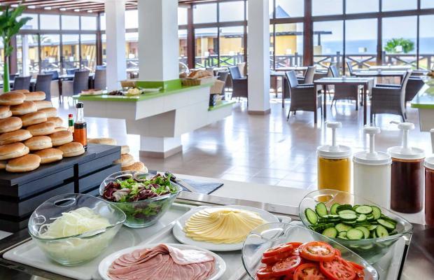 фотографии отеля Occidental Jandia Playa (ех. Barcelo Jandia Playa) изображение №15