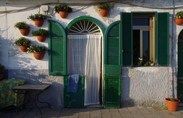 фото отеля Olive Tree Hostel изображение №5