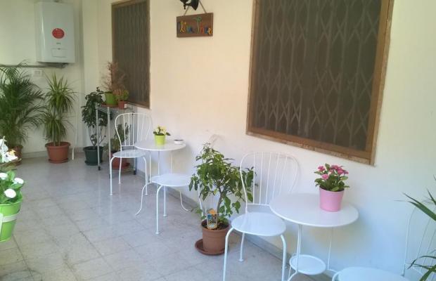 фотографии отеля Olive Tree Hostel изображение №3