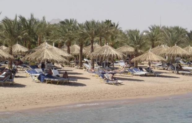 фото Hilton Sharm Fayrouz Resort изображение №14