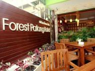 Forest Patong Hotel, 2*