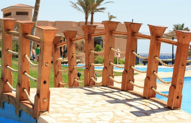 фото отеля Morgana Beach Resort Taba (ех. Morgana Azur Resort; Club Marmara) изображение №17