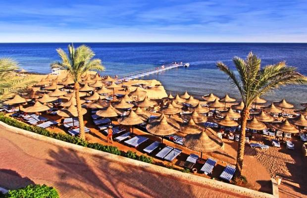 фотографии Melton Beach (ex. Melia Sinai Sharm) изображение №36