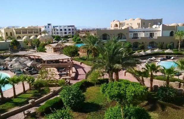 фотографии отеля Palmyra Resort (ех. Three Corners Palmyra Resort; Amar El Zaman) изображение №3