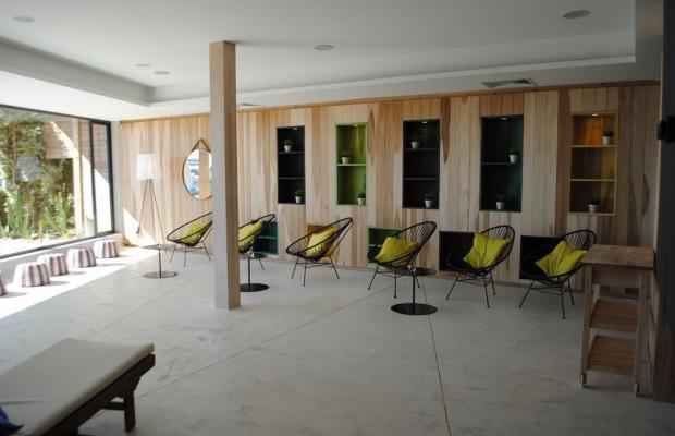 фото отеля Napa Mermaid Hotel & Suites изображение №29
