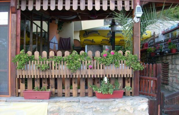 фотографии отеля Alex изображение №19