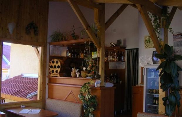 фотографии отеля Вилы Искър (Iskar Villas) изображение №3