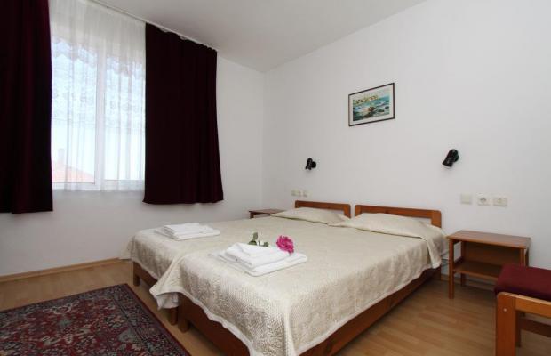 фотографии Verona изображение №8