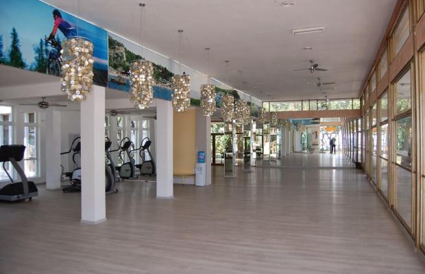 фотографии Russalka-Elite Resort изображение №8