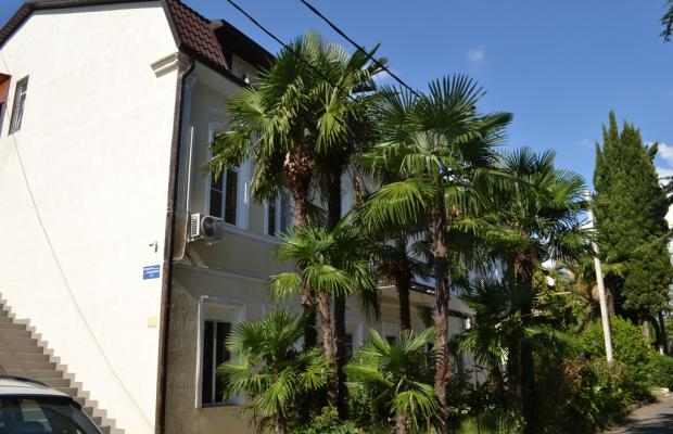 фотографии отеля Диоскурия (Dioskuriya) изображение №59