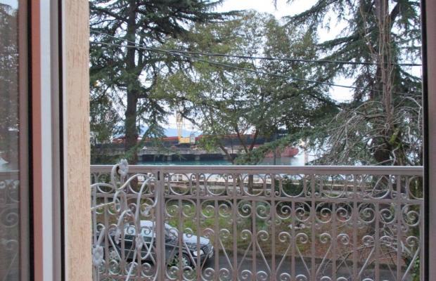 фотографии Диоскурия (Dioskuriya) изображение №24