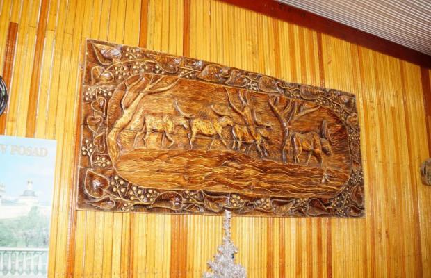 фотографии Жемчужина Камчатки (Zhemchuizhina Kamchatki) изображение №48