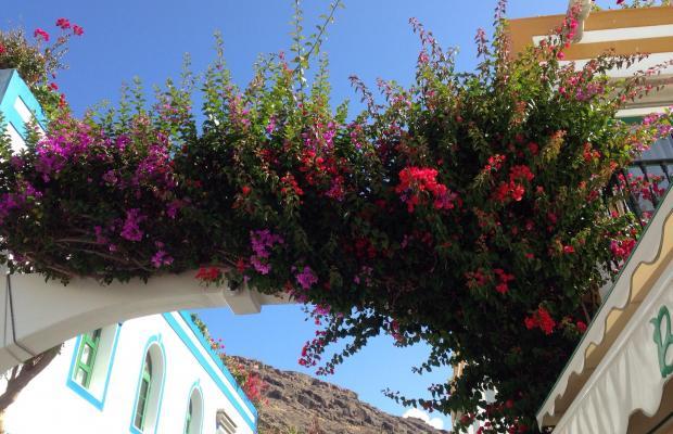 фото Residencial Puerto Mogan изображение №2