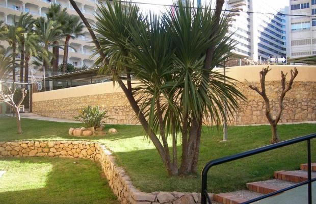 фото отеля Las Carabelas изображение №17
