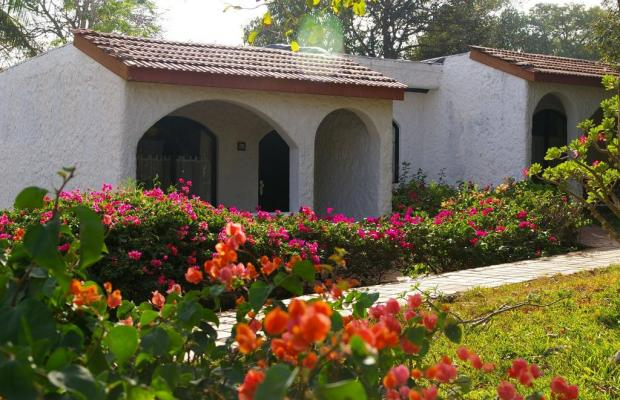 фотографии отеля Diani Sea Lodge изображение №15