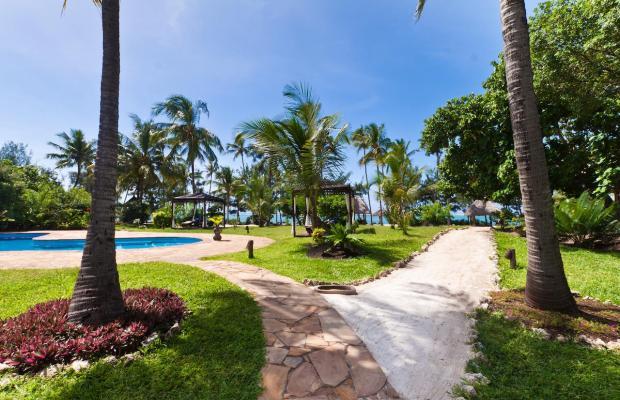 фотографии Anna of Zanzibar изображение №20