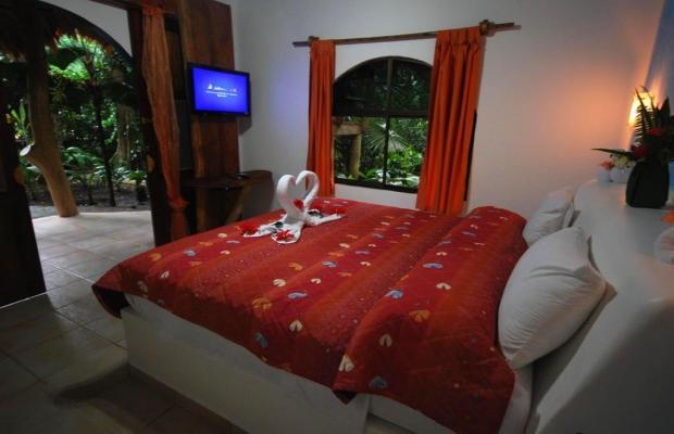 фото отеля Cariblue Beach and Jungle Resort изображение №77