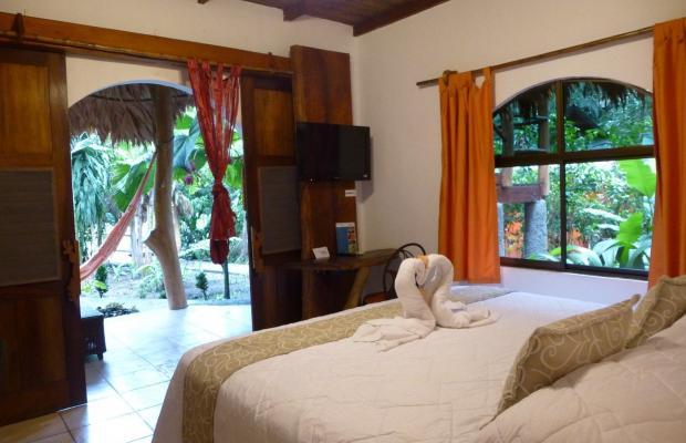 фото отеля Cariblue Beach and Jungle Resort изображение №41