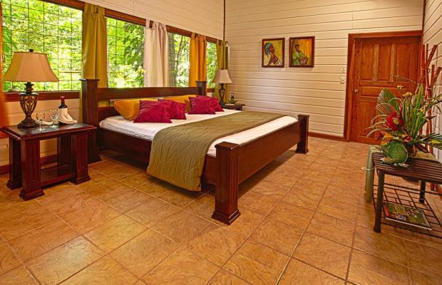 фотографии отеля Evergreen lodge изображение №67