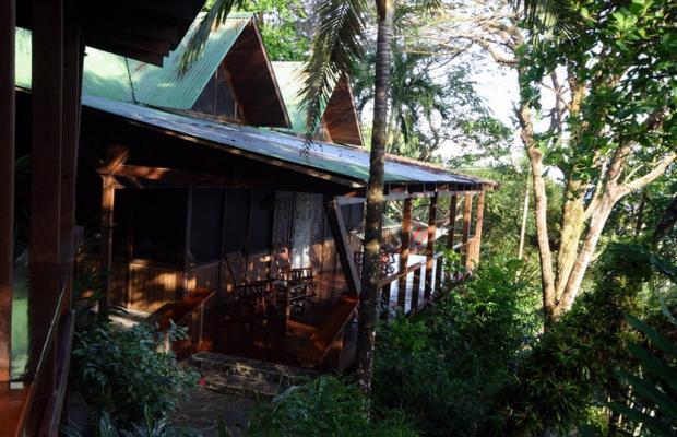 фото отеля Aguila de Osa Inn изображение №9