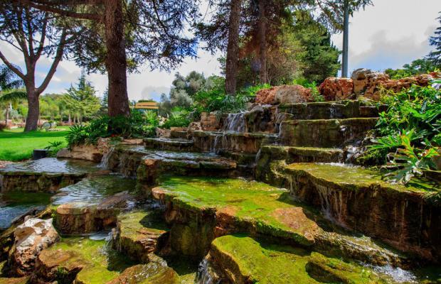 фотографии Hacienda Forest View изображение №76