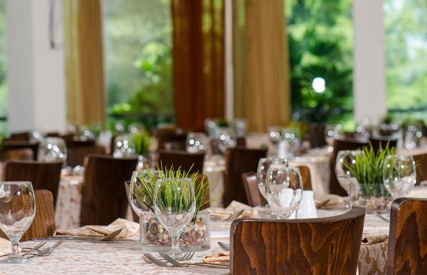 фото отеля Hacienda Forest View изображение №57