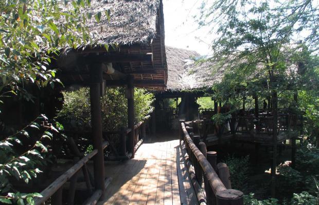 фото Mara Simba Lodge изображение №10