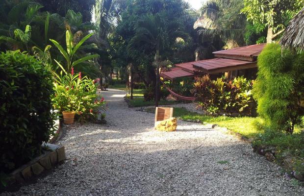 фотографии Esencia Hotel and Villas изображение №28