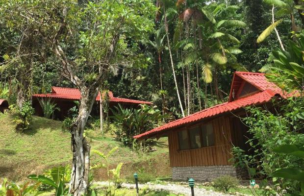 фото Esquinas Rainforest Lodge изображение №10