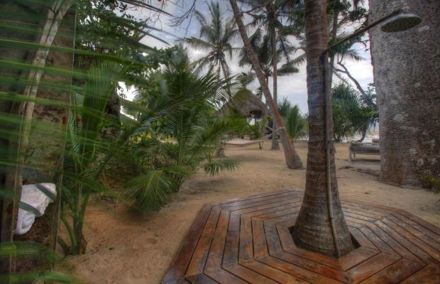 фотографии отеля Msambweni Beach House изображение №7