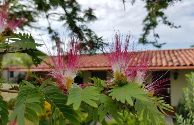 фото отеля La Mariposa изображение №33