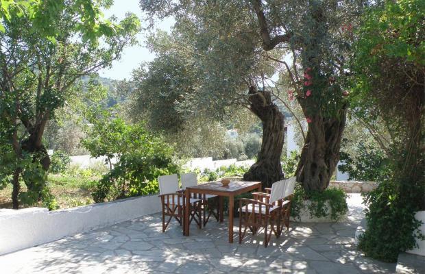 фото отеля Ageri Studios изображение №9