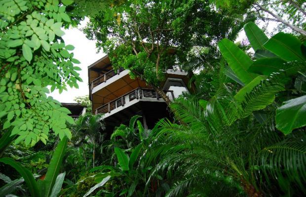 фотографии Tulemar Bungalows & Villas изображение №56
