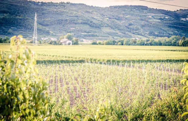 фото Agriturismo Corte Moranda изображение №14