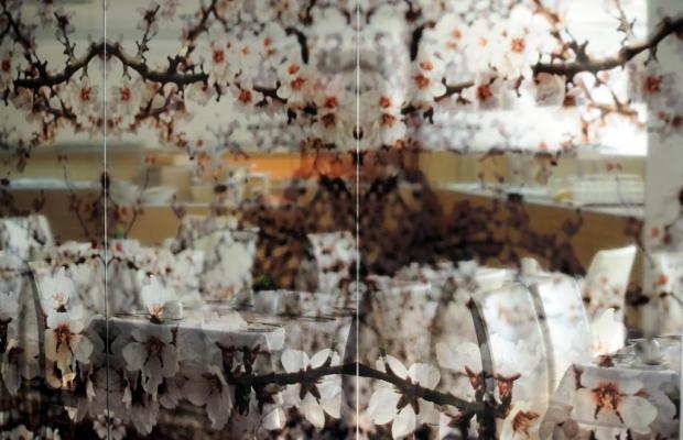 фотографии отеля Lucy изображение №19